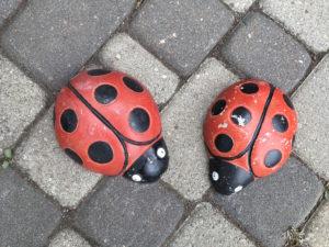 Stone Ladybugs