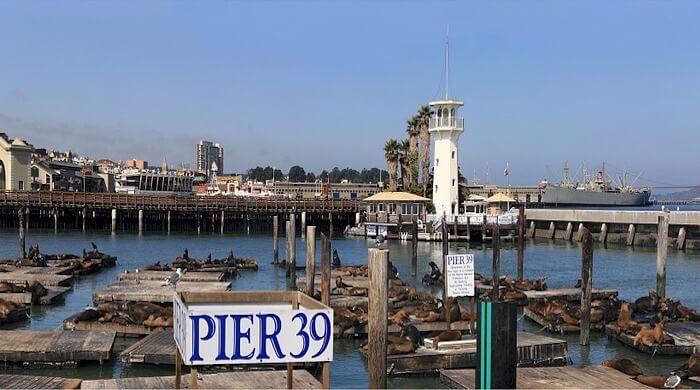 Pier 30 and Sea Lions pixabay skeeze